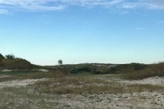Streamsong Red 1 behind green
